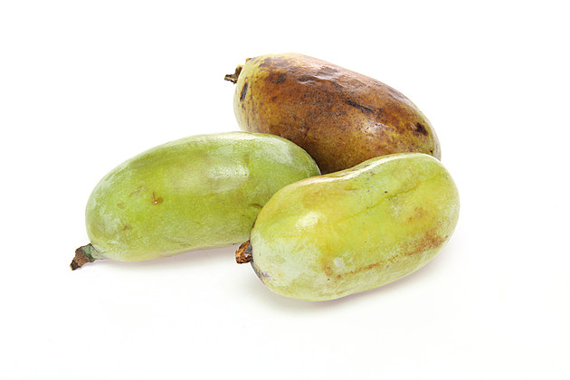 Pawpaw in a white background